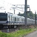 常磐線 E531系K424編成 383M 普通 水戸 行