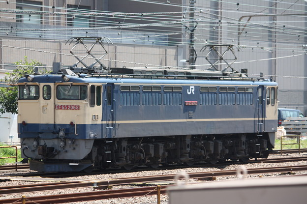 EF65 2065