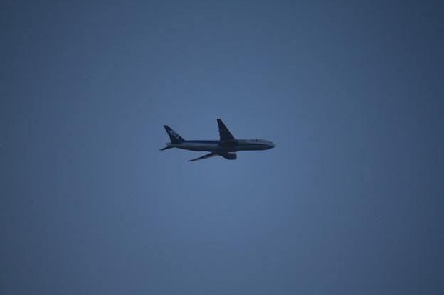 須磨海浜公園から見た全日空機