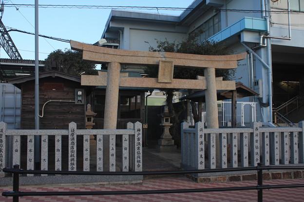 須磨海浜公園 20180101_45