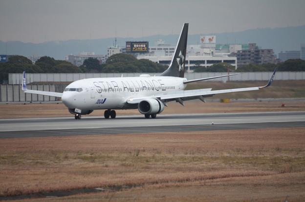 ANA B737-800 JA51AN スターアライアンス塗装 (2)