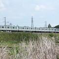 春の田園風景を通過する水戸線E501系 (1)