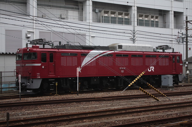 EF81 98