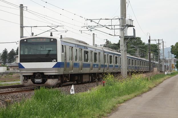 E531 普通