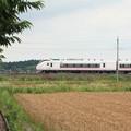 写真: 麦畑を行くE657系 (13)