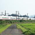 夏日の田園風景を行くE657系