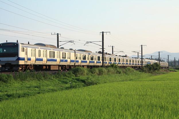 夏日の田園風景を行くE531系 (7)
