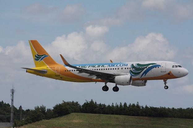 セブパシフィック航空 A320-200 RP-C3275 (1)