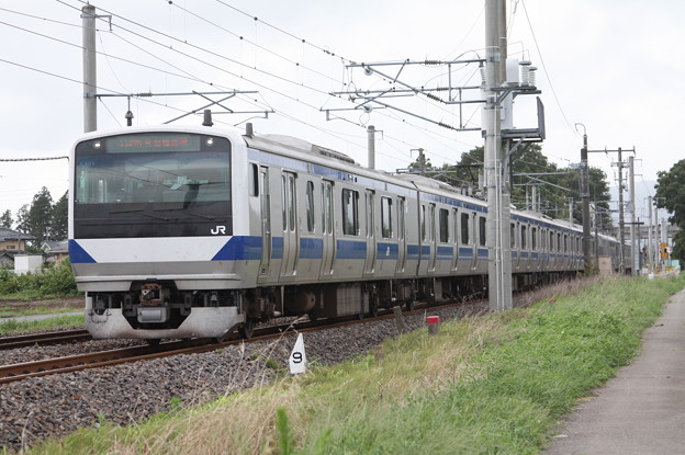 常磐線 E531系K401編成 1147M 普通 勝田 行