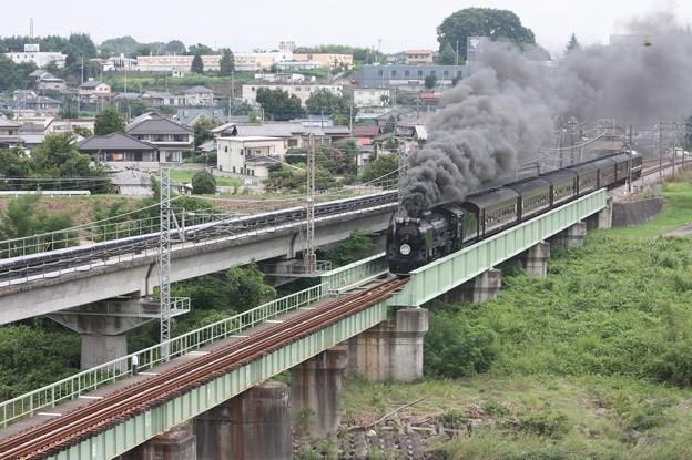 SLレトロ碓氷 D51 498+旧客6B+EF64 1052 安中鉄橋 (4)