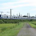 黄金の稲を行く常磐線E531系 (1)