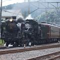 写真: 秩父鉄道 パレオエクスプレス 5001レ C58 363+12系客車4B 波久礼付近 (4)