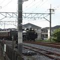 秩父鉄道 パレオエクスプレス 5002レ C58 363+12系客車4B 石原付近 (2)