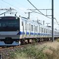 水戸線 E531系3000番台K551編成 736M 普通 小山 行