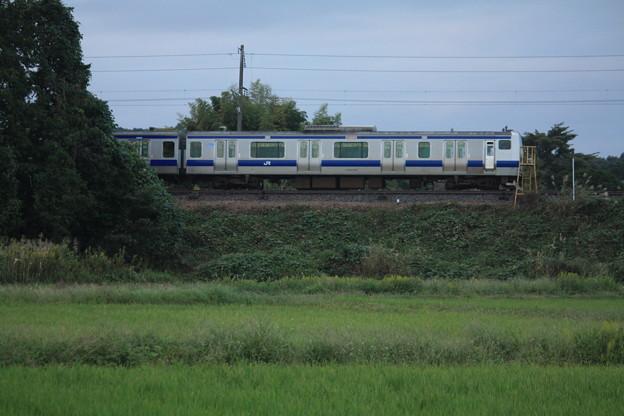 稲刈り後の光景を行くE531系 (12)