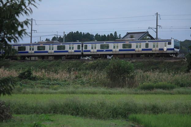 稲刈り後の光景を行くE531系 (13)