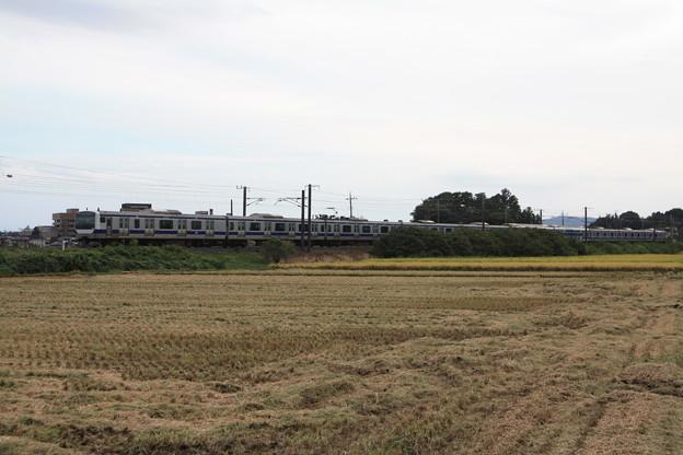 稲刈り後の光景を行くE531系 (9)