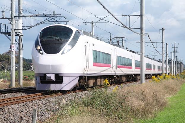 E657系K11編成 8M 特急ひたち8号 品川 行