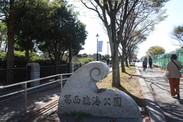 Photos: 葛西臨海公園 20181021_03