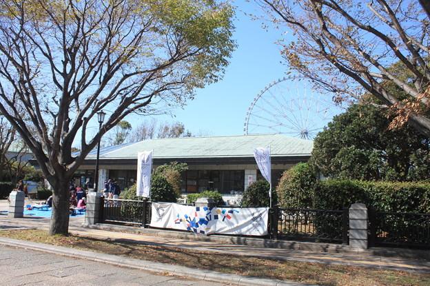 葛西臨海公園 20181021_13