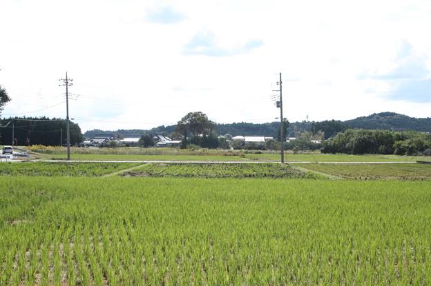 秋の風景 20181020_11