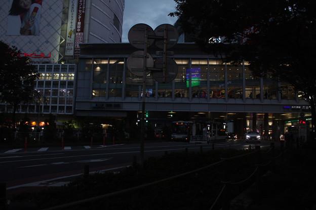 渋谷散策 20181111_27