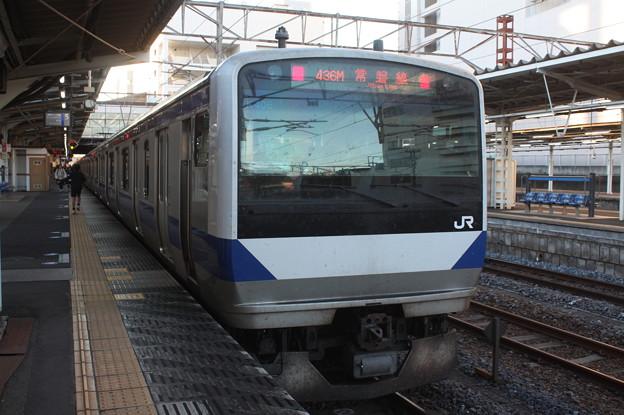 常磐線 E531系K406編成 436M 普通 上野 行