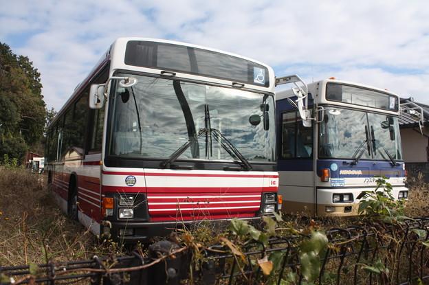 茨城交通鯉渕営業所に留置されている小田急バスと京王バス