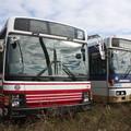 Photos: 茨城交通鯉渕営業所に留置されている小田急バスと京王バス