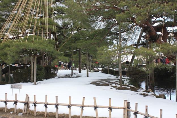 兼六園観光 20181230_39