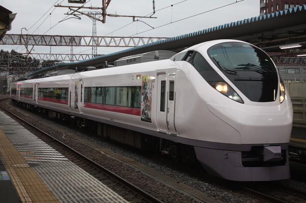 E657系K16編成「花丸遊印録」ラッピング 80M 特急ときわ80号 品川 行 2019.02.15