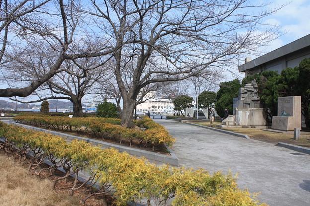 横須賀ヴェルニー公園 散策 20190302_96