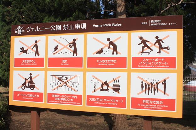 横須賀ヴェルニー公園 散策 20190302_106