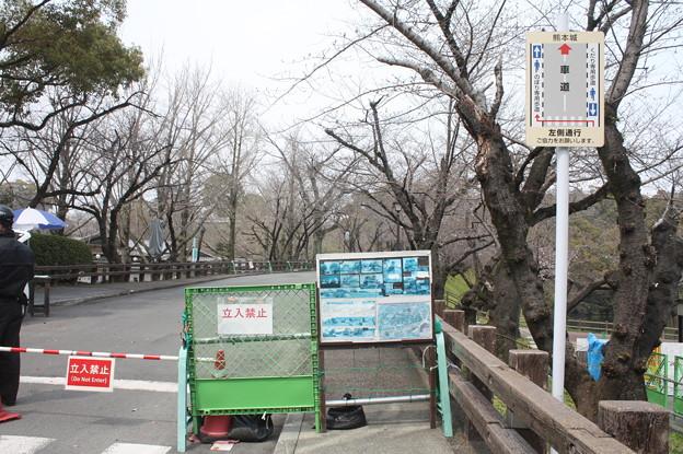 熊本城周辺散策 20190322_10