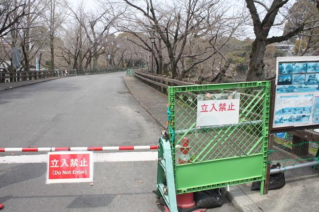 熊本城周辺散策 20190322_11