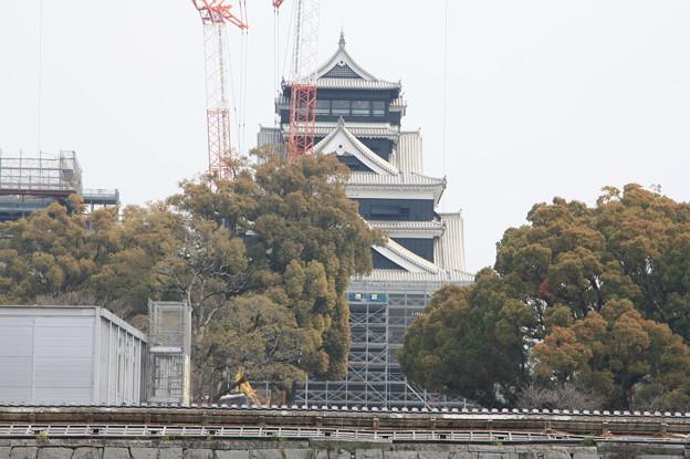 熊本城観光 20190322_23