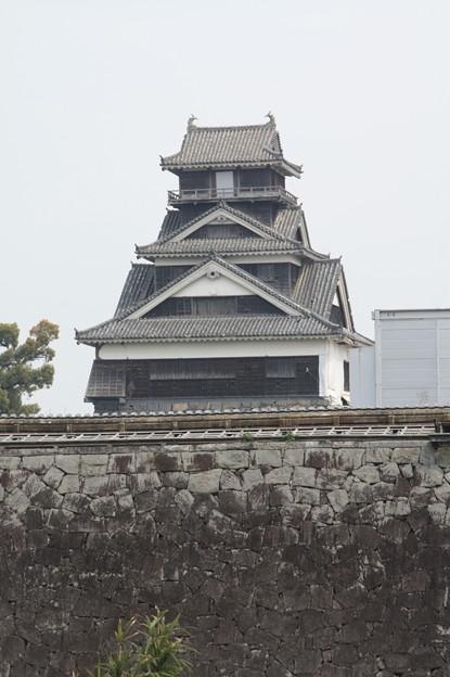 熊本城観光 20190322_24