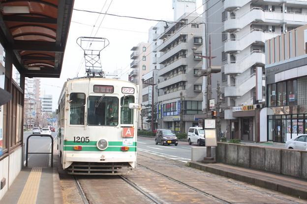 熊本市電 1000形1205号