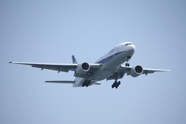 全日空 ANA B777-200ER JA744A (2)