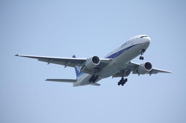 全日空 ANA B777-200ER JA744A (3)