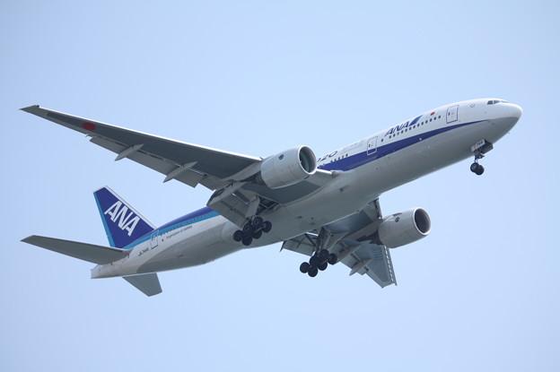 全日空 ANA B777-200ER JA744A (5)