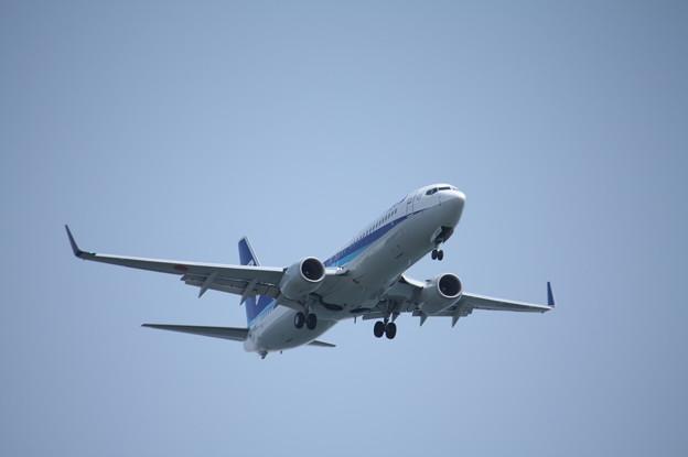 全日空 ANA B737-800 JA80AN