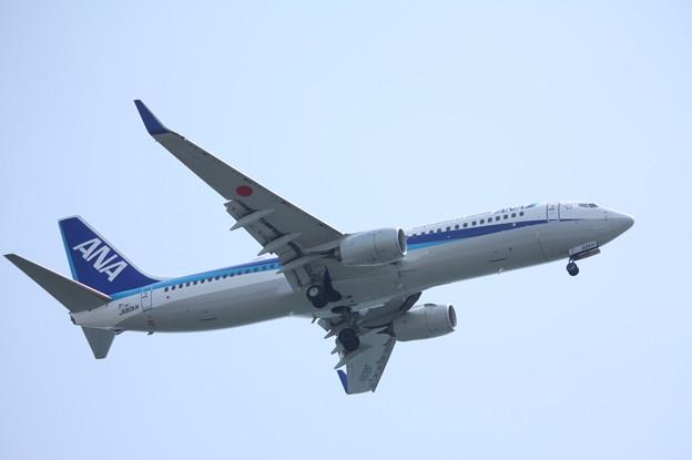 全日空 ANA B737-800 JA80AN (4)