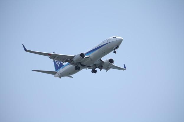 全日空 ANA B737-800 JA69AN (3)