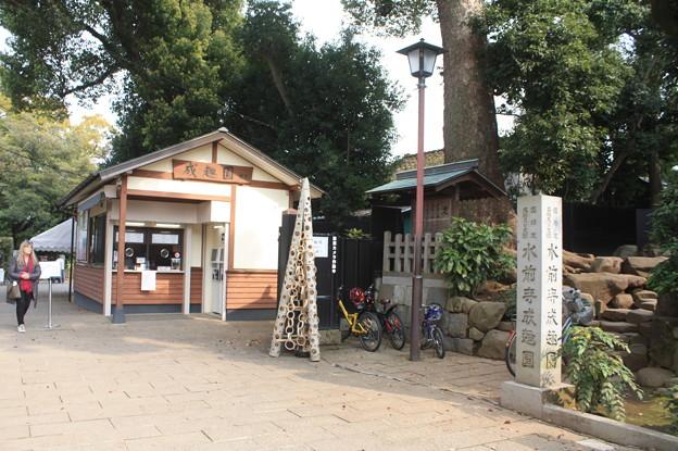 水前寺公園 20190322_55