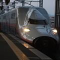 Photos: 上越新幹線 E4系P20編成 (1)