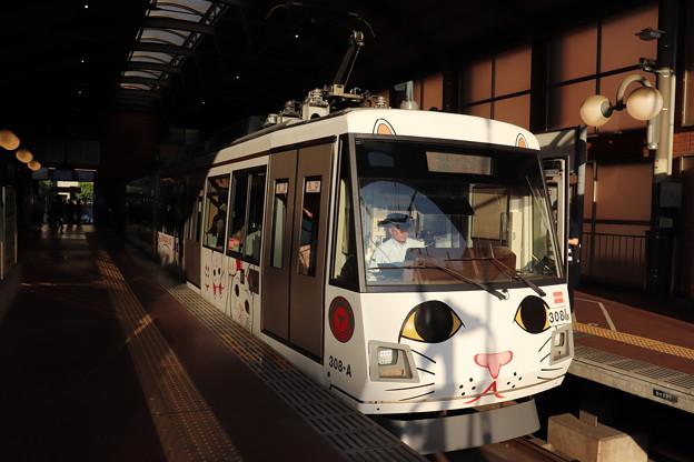 東急世田谷線 300系308F 招き猫電車