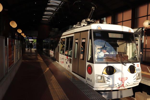 東急世田谷線 300系308F 招き猫電車 (1)