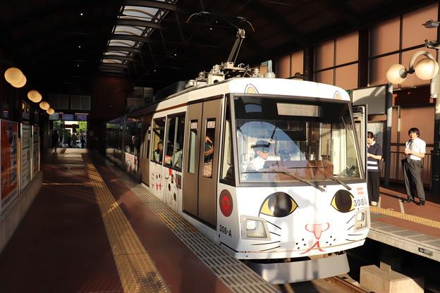 東急世田谷線 300系308F 招き猫電車 (3)