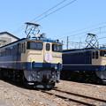 Photos: EF65 1102・EF65 2101 「さくら」ヘッドマーク (1)